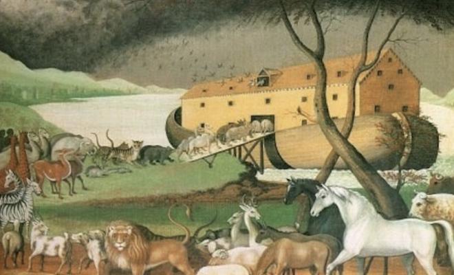 أندي و الطوفان