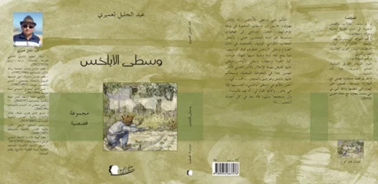 """مسارات المعنى في """"وسطى الأباخس"""" لـ ذ. عبد الجليل لعميري"""