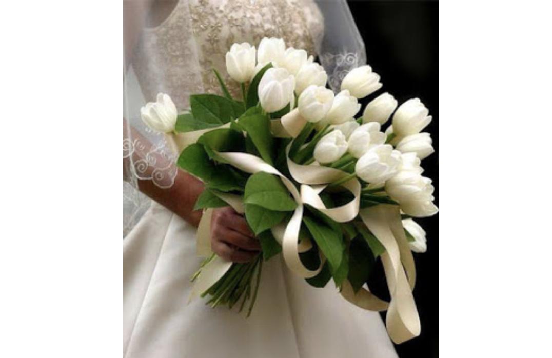 الحسناء يازوكو لبست فستان الزفاف